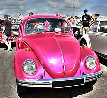 Pink Beetle by Vicki Spindler (VHS Photography)