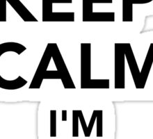 Keep calm I'm a notary Sticker