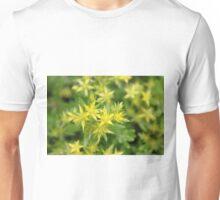 Sedum Stars Unisex T-Shirt