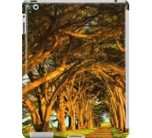Cypress Tunnel Sunset Glow iPad Case/Skin