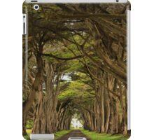 Point Reyes Cypress Tunnel iPad Case/Skin