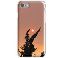 July Skies iPhone Case/Skin