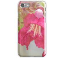 Desert Willow Bloom, Flor de mimbre iPhone Case/Skin