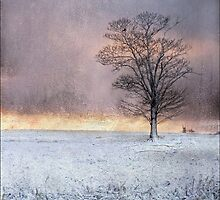 Wramplingham, Norfolk - Sunrise in Winter by DaveTurner