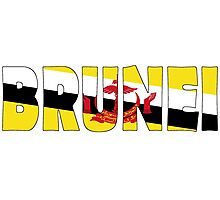 Brunei Photographic Print