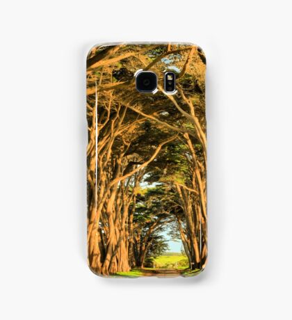 Cypress Lined Road Samsung Galaxy Case/Skin