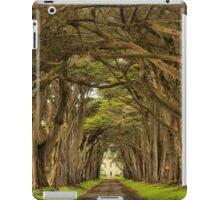 Afternoon At The Cypress Tunnel iPad Case/Skin