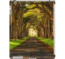 Cypress Tunnel Afternoon Glow iPad Case/Skin
