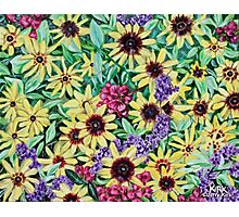 'Arrangement of Greens, Yellow, Purple and Red' Photographic Print