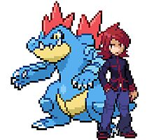 Silver And Feraligatr Photographic Print