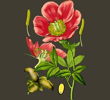 wild peony Womens Fitted T-Shirt