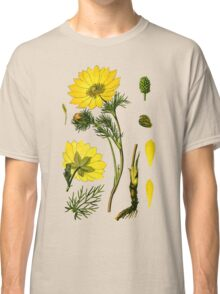 spring adonis Classic T-Shirt