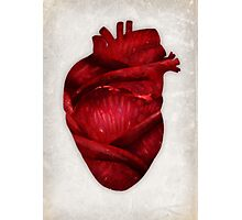 Red Scarlet Blood Rose Heart Photographic Print