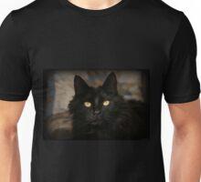 Piercing Unisex T-Shirt