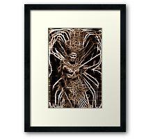 Alien Night Butterfly Framed Print