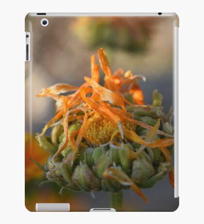 Camp-Fire iPad Case/Skin