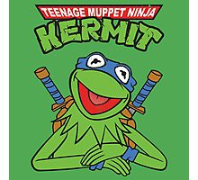 Teenage Muppet Ninja Kermit Photographic Print