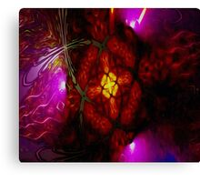 Seeing Through Stain Glass Canvas Print