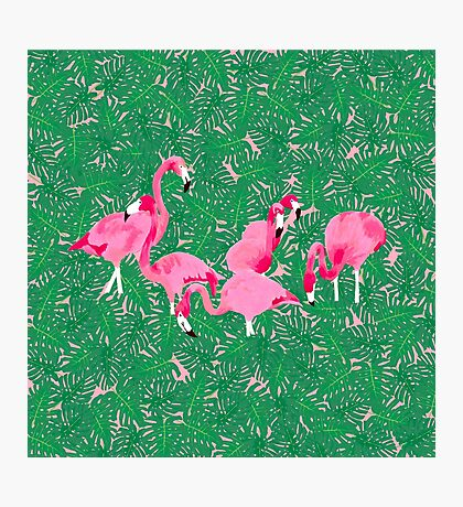 Flamingos on delicious monsters Photographic Print