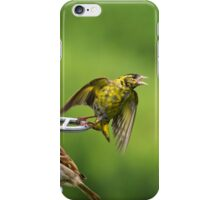 This is my perch! iPhone Case/Skin