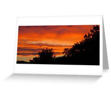 Look Now Look All Around Greeting Card