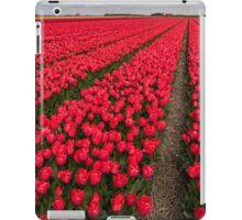 Tulip fields in springtime iPad Case/Skin