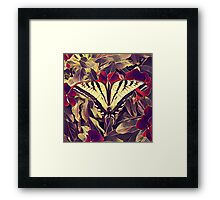 Butterfly K1 Framed Print