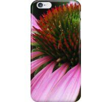 Echinacea in Manitou Springs iPhone Case/Skin