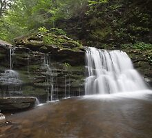 Summer Greenery Surrounds Cayuga Falls by Gene Walls