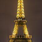 Eiffel Tower by Radek Hofman