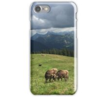 Gossiping Cows iPhone Case/Skin