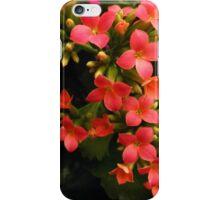 Orange Glow iPhone Case/Skin