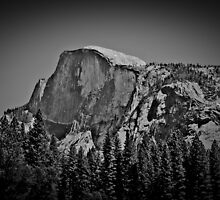 Half Dome in black and white by Tracy LeMaster
