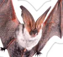 bat sticker Sticker
