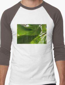 Luscious Tropical Greens - Huge Leaves Patterns - Horizontal View Upwards Left Men's Baseball ¾ T-Shirt
