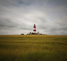 Happisburgh Lighthouse by Ursula Rodgers Photography