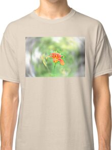 Beauty in chaos  Classic T-Shirt