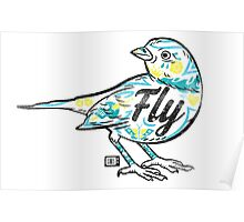 Fly Guy Poster