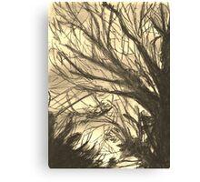 Winter Sky - Sepia Canvas Print