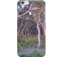 Koala's Bride Aisle iPhone Case/Skin