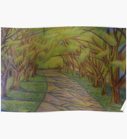 Florence Park- Horse Chesnut Path- Oxford Poster