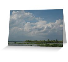 Lily pads and clouds Greeting Card