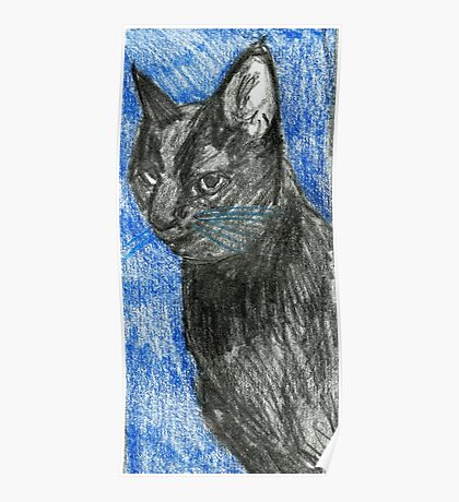 My Cat Midnight Poster