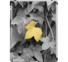 Clear iPad Case/Skin