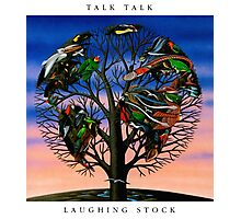Talk Talk - Laughing Stock Photographic Print