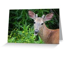 He's Back! Greeting Card