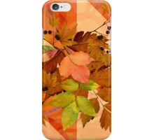 Autumn Leaves on Marbled Shapes iPhone Case/Skin