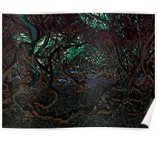 Mangrove Forest Poster