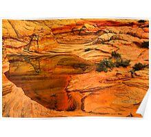 Arizona Desert Oasis Poster