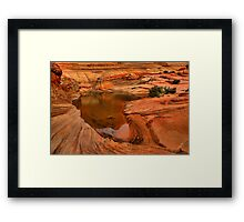 Northern Arizona Desert Oasis Framed Print